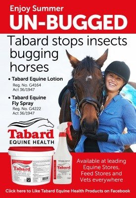 290920 Tabard Equine Network Banner Ad